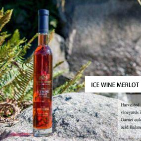 加拿大梅洛红冰葡萄酒5526