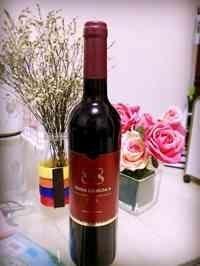 88梦幻岛干红葡萄酒