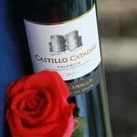 西班牙酒莊酒